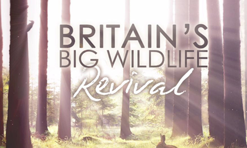 Whats On TV? – Britain's Big Wildlife Revival
